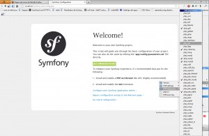 Symfony config screen